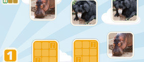 Zoo Animals Matching Game